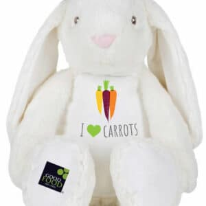 I love Carrots Bunny