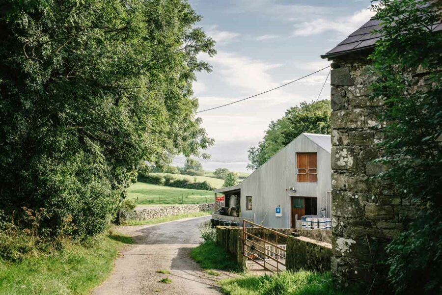 5 of the Top Irish Micro Breweries