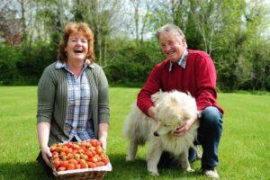 Kearns Fruit Farm, Co. Wexford, Ireland