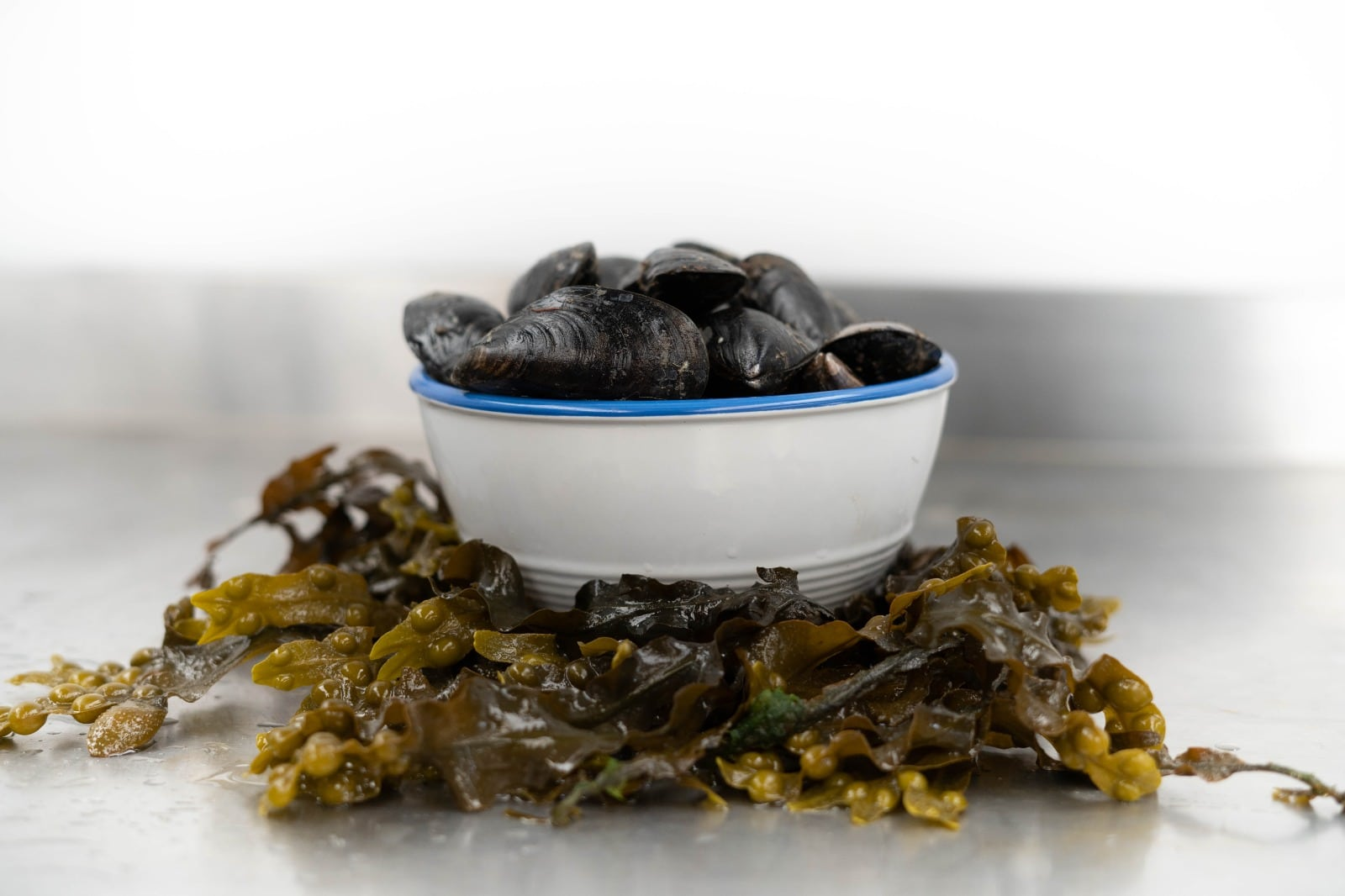 Realt na Mara Steamed Mussels with White Wine Sauce