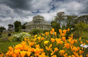 Natiional Botanic Gardens
