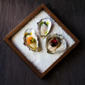 Anita Murphy Oysters